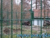 Gradina Zoologica Sibiu (16)