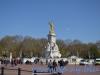 Palatul Buckingham (2)