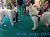 Pet Expo 2013