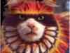 pisici-pictate-14
