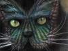pisici-pictate-5