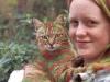 pisici-pictate-7