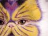 pisici-pictate-9