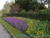 Regents Park (14)