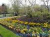 Regents Park (3)