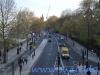 Trafalgar Square Londra (11)