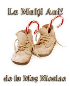 la_multi_ani_de_la_mos_nicolae