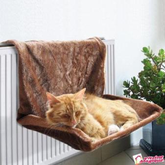 hamac-pisica