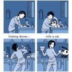 Viata cu o pisica..