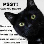 Ziua Pisicilor Negre – 17 August