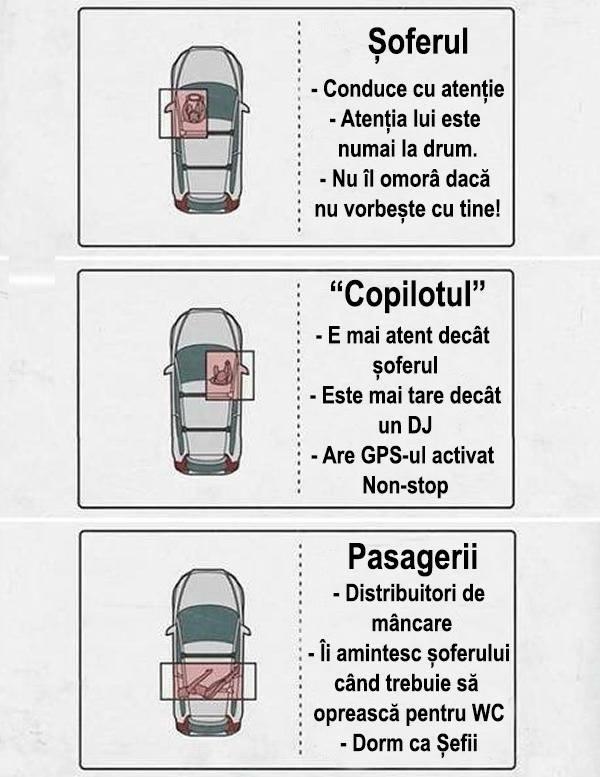sofer, copilot, pasageri