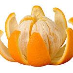 Intr-o zi mi-ai daruit.. o portocala :)