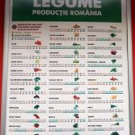 Calendarul legumelor romanesti din supermarket-uri